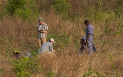 Farmprojekt in Okene (Nigeria) 2018