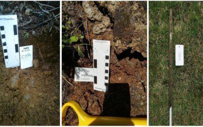 Geochemical Soil Sampling